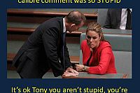 Mr Abbott's Er Um Ah 'Woman of Calibre' blunder speaks volumes